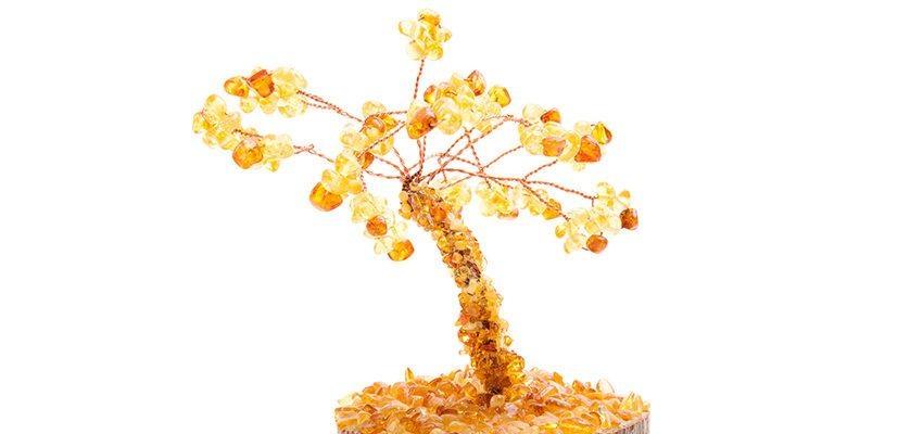 Arbre de vie avec de l'ambre : quels bienfaits ?