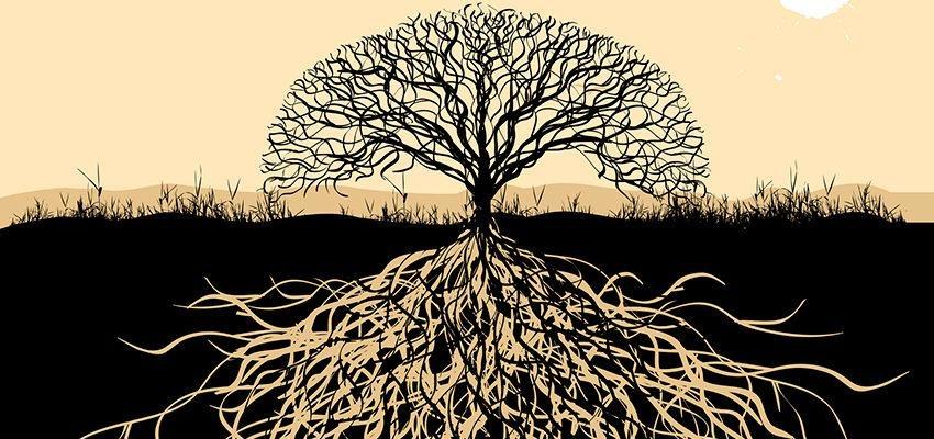 Les bienfaits d'un arbre de vie attrape-rêve
