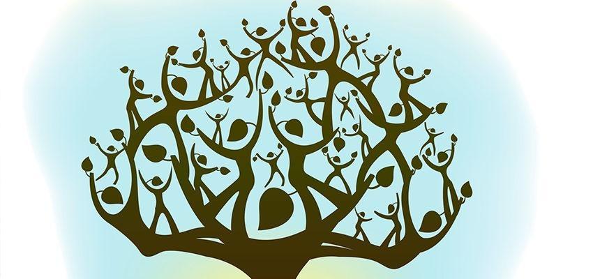 Quel est le symbole de l'arbre de vie ?
