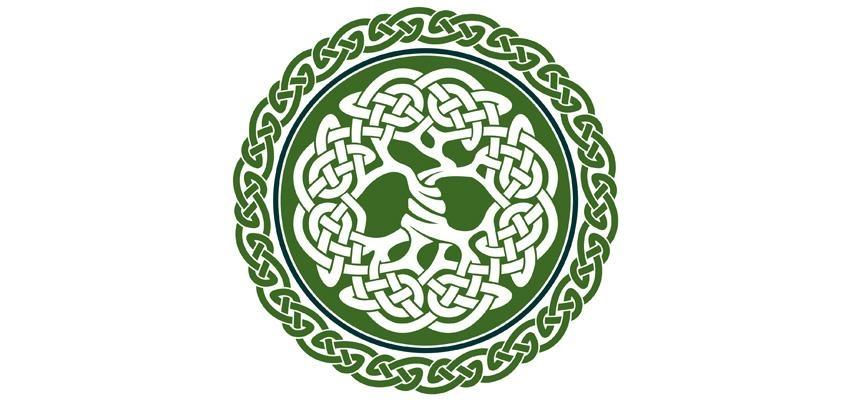 L'arbre de vie celte, ou les secrets de Crann Bethadh...
