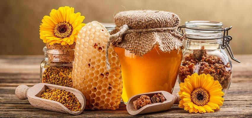 L'apithérapie : se soigner grâce au miel