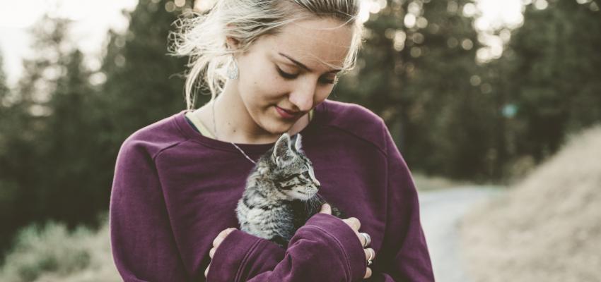 Pourquoi les chats sentent tout?