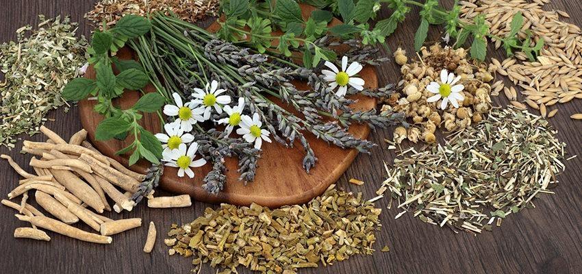 La naturopathie et l'alimentation :  les aliments naturels