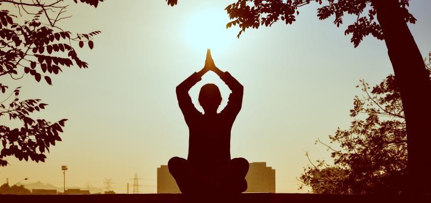 La pratique du yoga nirodha