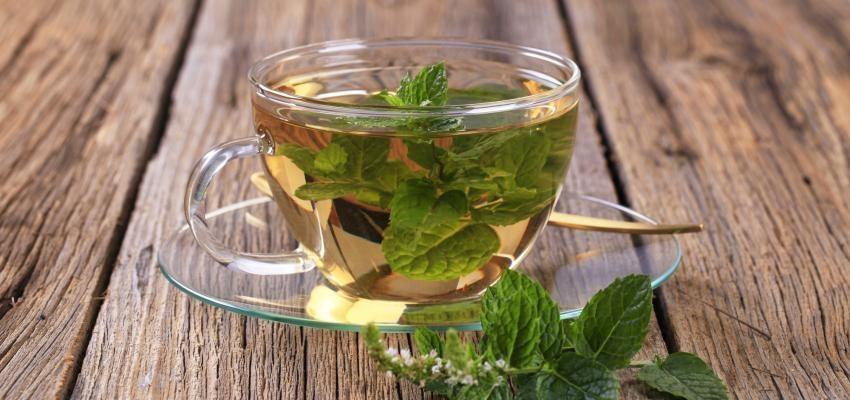 Le pouvoir du thé à la menthe : les vertus secrètes d'une boisson populaire...