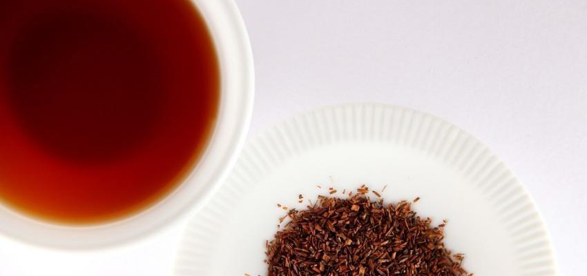 Quelle est la véritable puissance du thé rouge ?