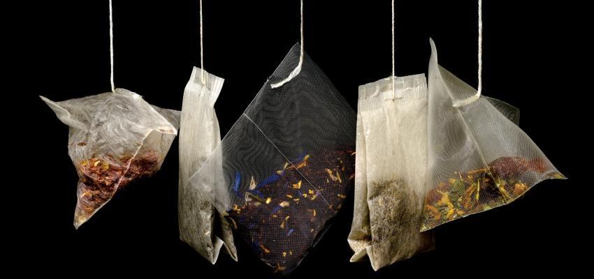 Quel est le thé le plus fort ?