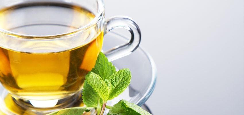 La puissance du thé vert : ses bienfaits pour la santé