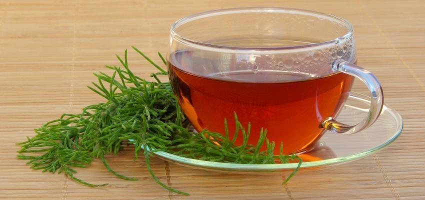 Le pouvoir du thé à la prêle : douceur et amour dans votre vie
