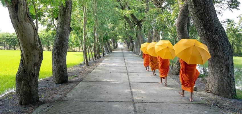 Vrai ou faux : les bouddhistes sont végétariens