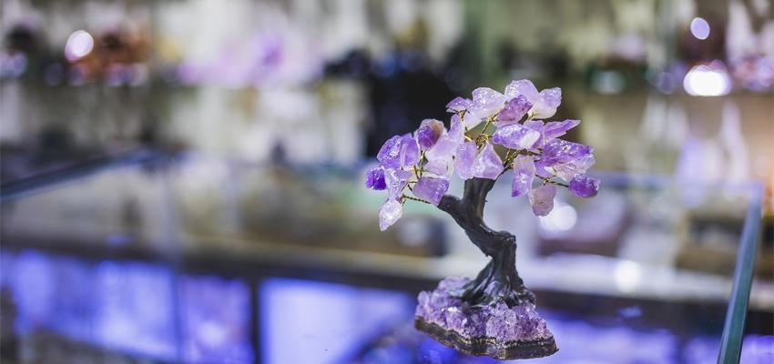 Les plantes et cristaux qui améliorent nos relations selon le Feng Shui !