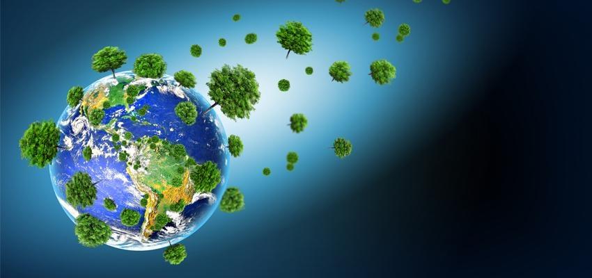 10 moyens faciles pour sauver la Terre Mère