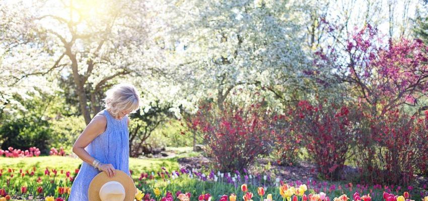 Quel est le calendrier lunaire du jardinier en 2020 ?