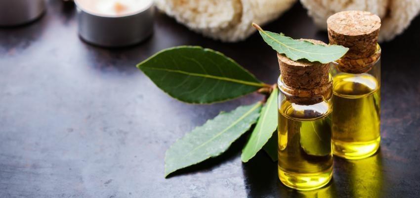 Les bienfaits de l'huile essentielle de laurier
