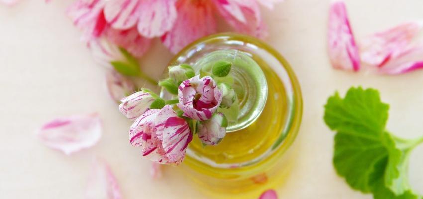 Les bienfaits de l'huile essentielle de géranium rosat