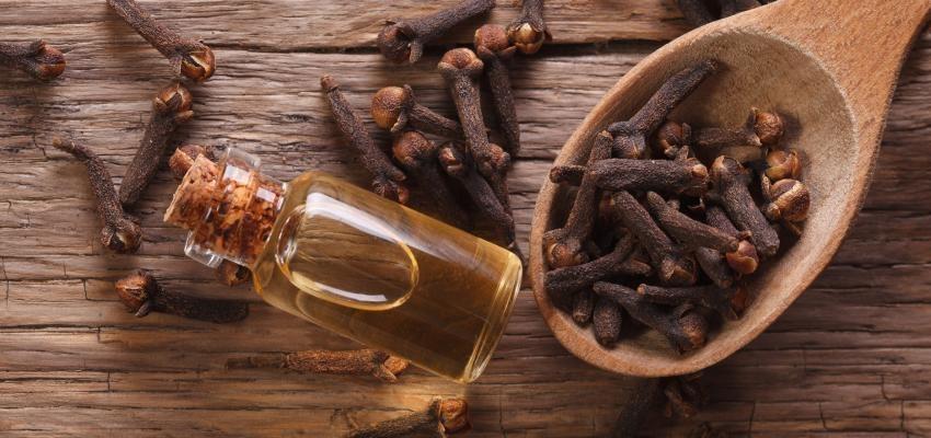 Les bienfaits de l'huile essentielle de giroflier