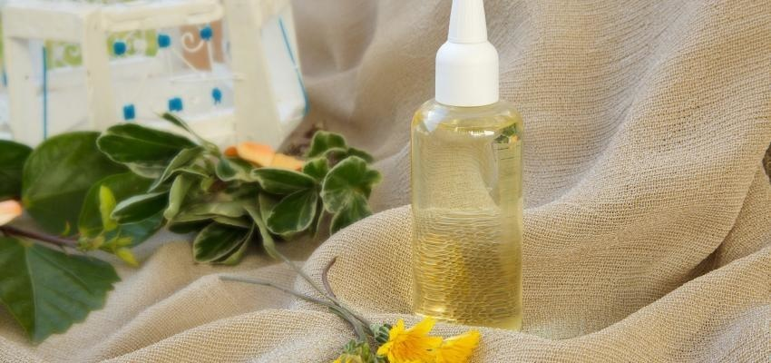 Utilisations, propriétés et bienfaits de l'huile essentielle de Camphre