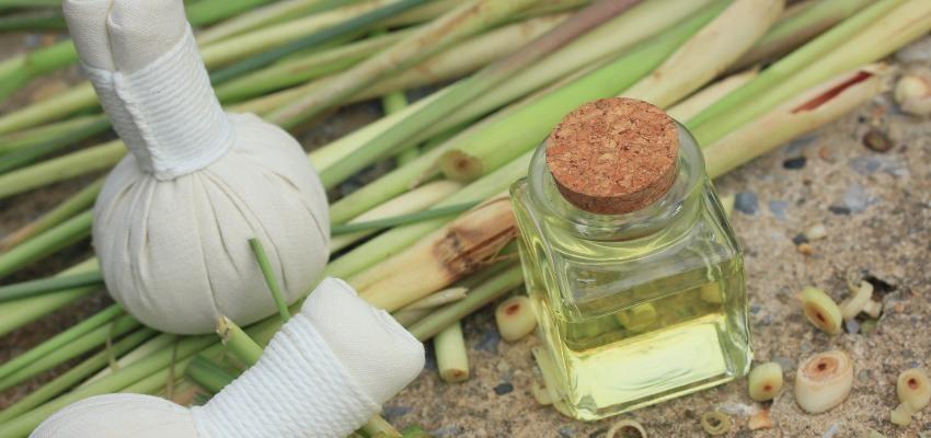 Les bienfaits de l'huile essentielle de palmarosa