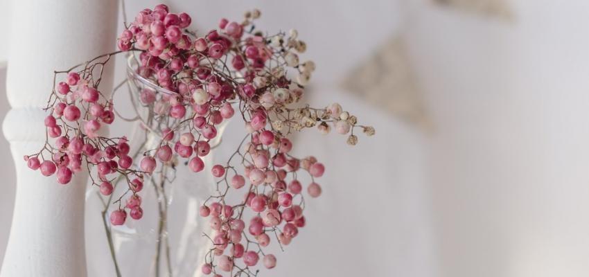 Les bienfaits de l'huile essentielle de poivre rose (ou baies roses)