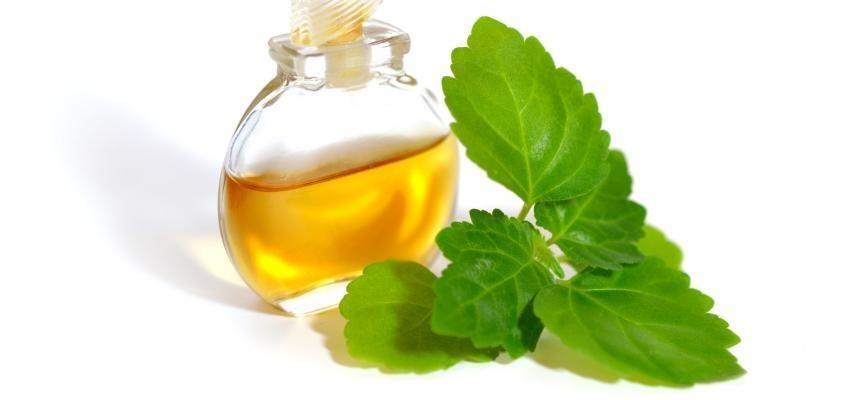 Les bienfaits de l'huile essentielle de patchouli