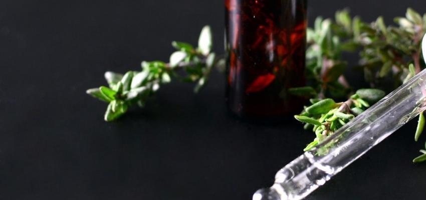 Les bienfaits de l'huile essentielle de thym vulgaire à thuyanol