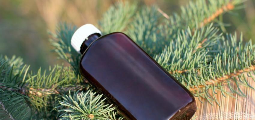 Les bienfaits de l'huile essentielle de térébenthine
