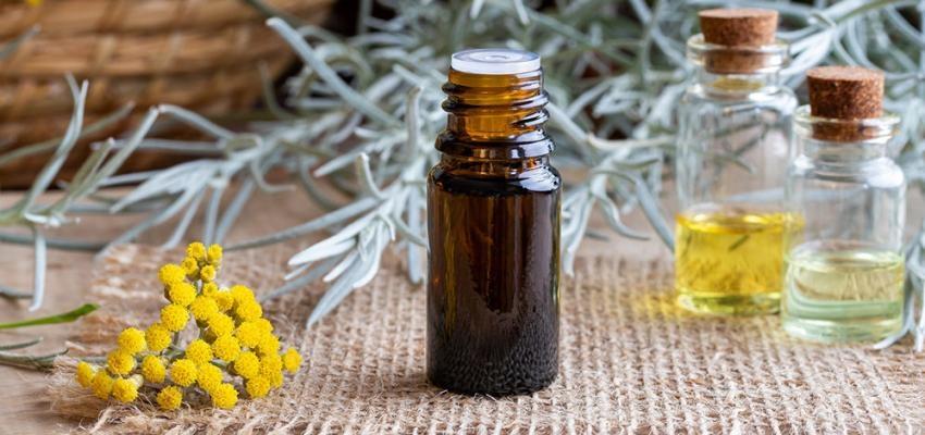 Les bienfaits de l'huile essentielle d'hélichryse italienne