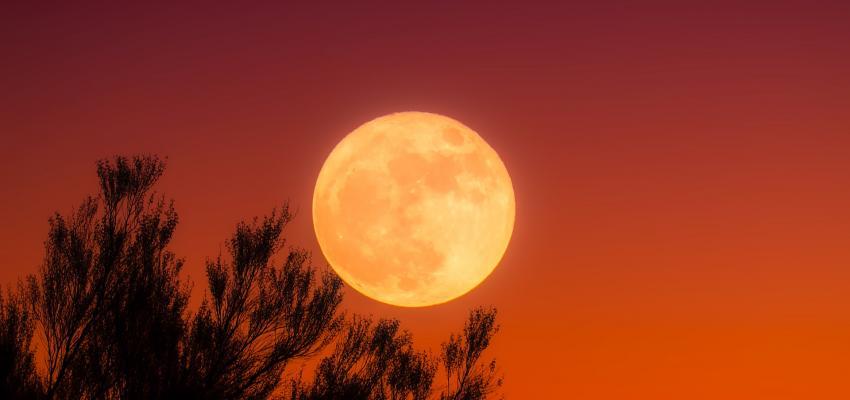 La possibilité pour accoucher à la pleine lune