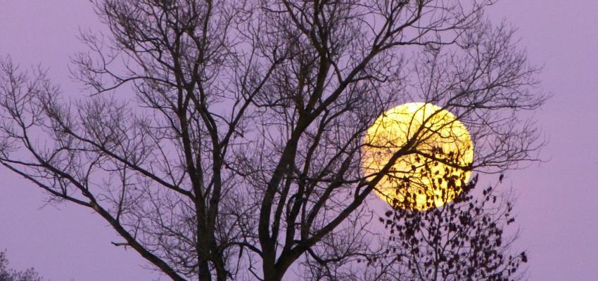 Les étapes pour activer les vœux de la pleine lune