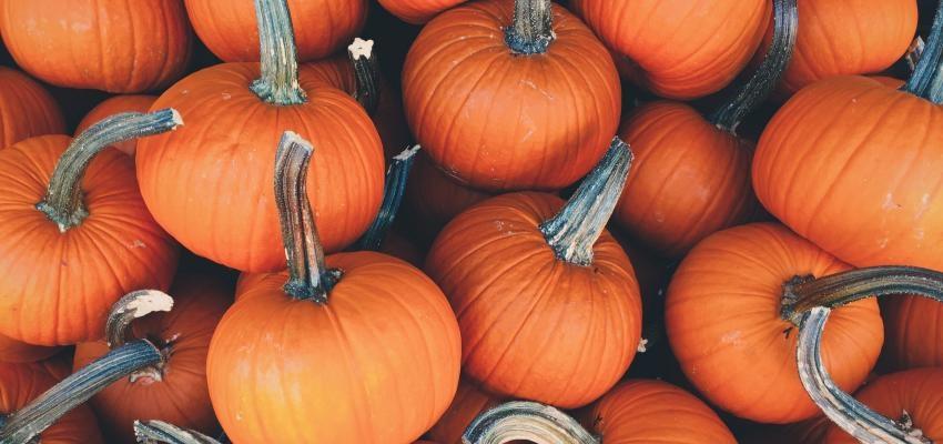 5 astuces pour l'Halloween