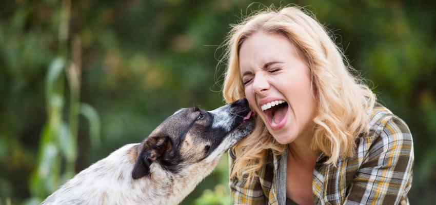 Les chiens et la spiritualité : pourquoi lèchent-ils les gens ?