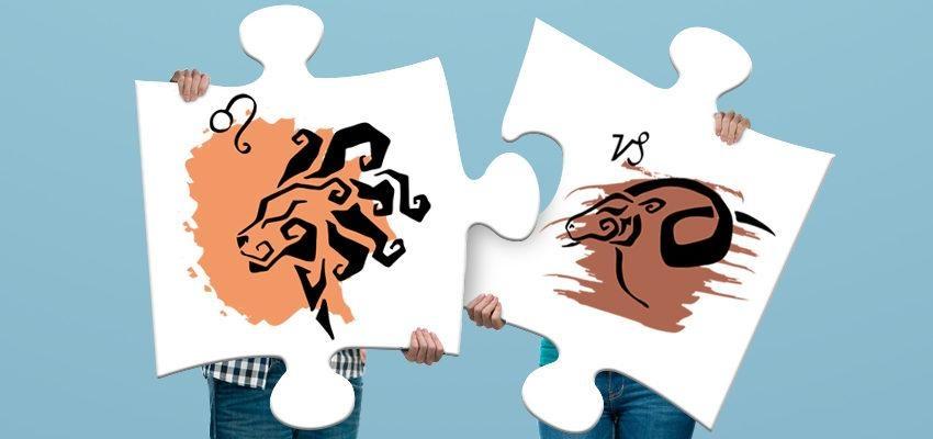 La compatibilité amoureuse femme Capricorne et homme Lion