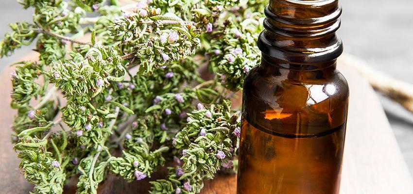 Connaissez-vous les huiles essentielles de thym ?