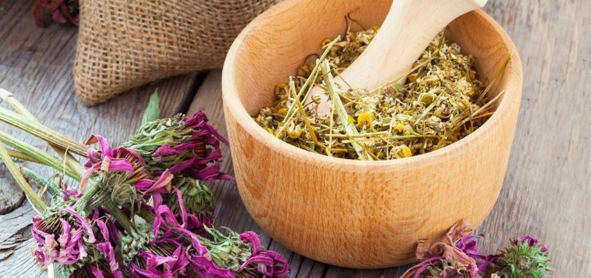 Découvrez 5 combinaisons d'huiles essentielles d'automne