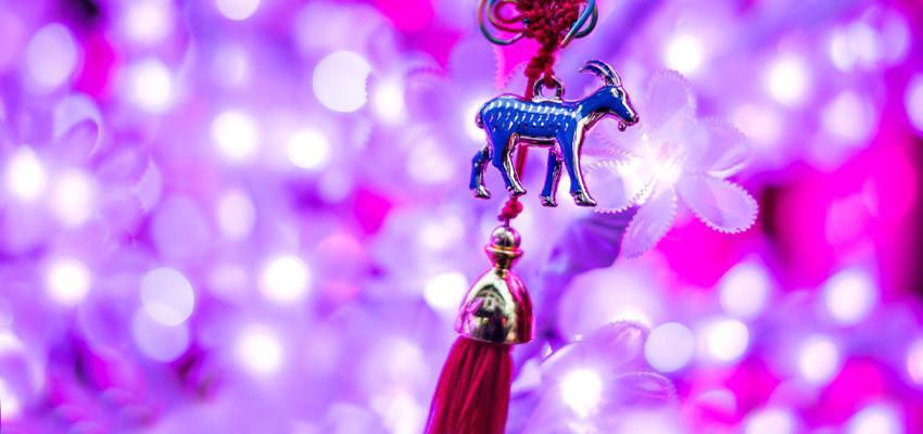 Découvrez votre animal secret de l'horoscope chinois !