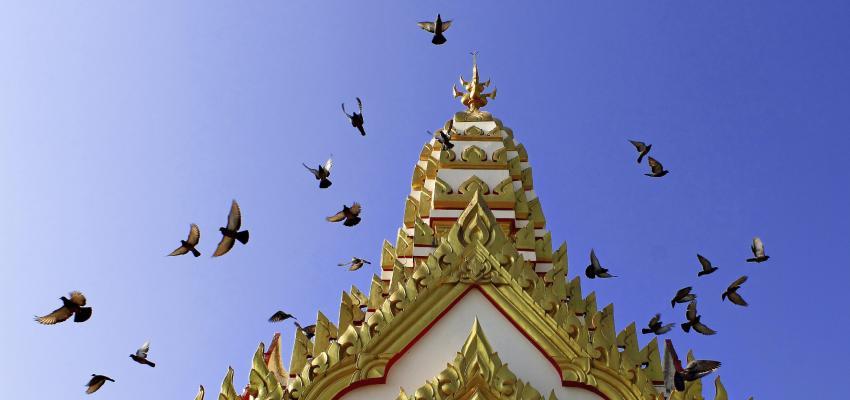 Quelle est la différence entre la religion et la spiritualité ?