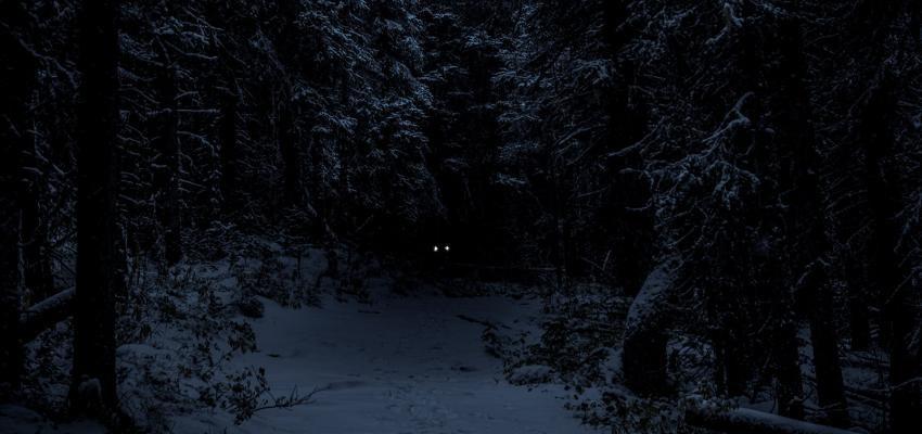 Djinn – Créature surnaturelle démoniaque ou gentille ?