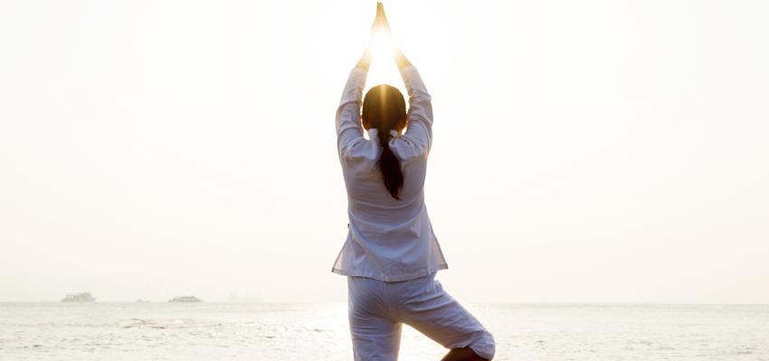 Entraîner son corps et apaiser son esprit avec le yoga hatha