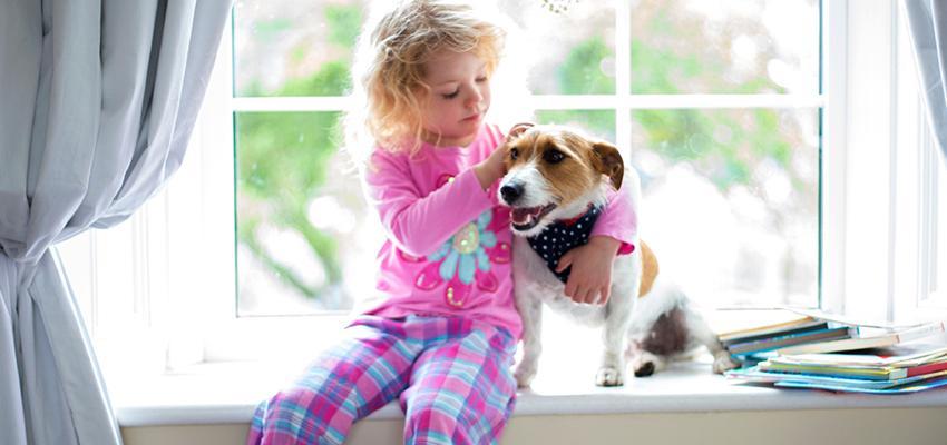 Lithothérapie : Pierre Serpentine pour l'aura des animaux