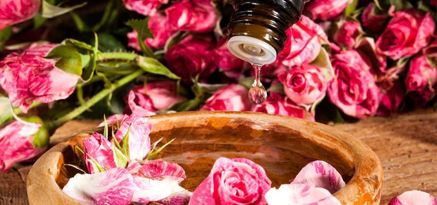Les bienfaits de l'aromathérapie et son usage au quotidien