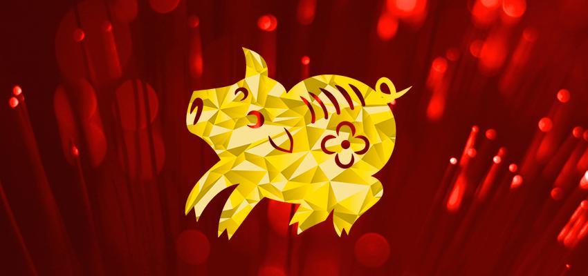 Horoscope Chinois 2016 - Cochon