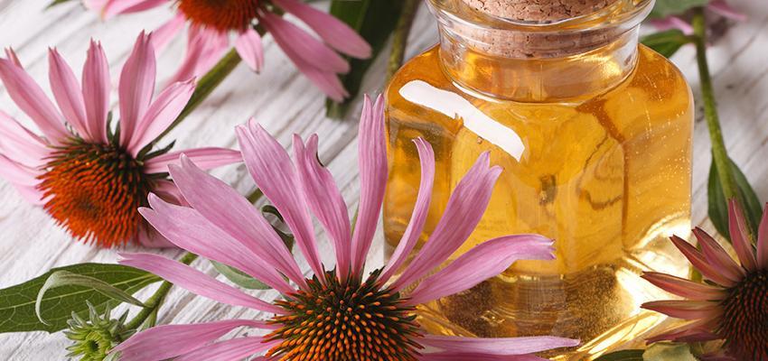 Guérir l'anxiété par les 5 huiles essentielles