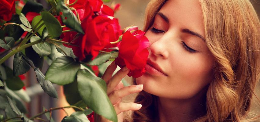 Horoscope des Fleurs : Découvrez votre plante idéale grâce à votre signe