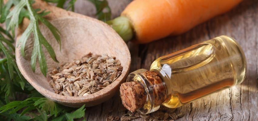 Les bienfaits de l'huile essentielle de carotte