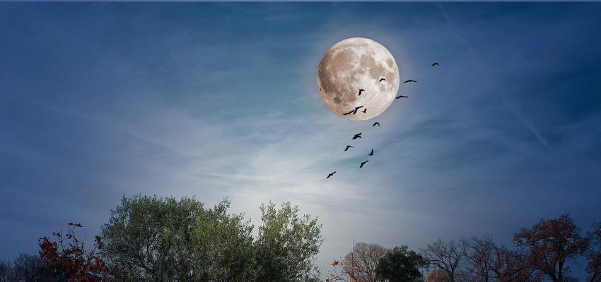Les émotions de la pleine lune
