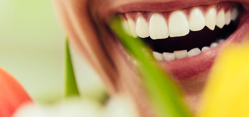 Interprétation des Rêves - Les Dents