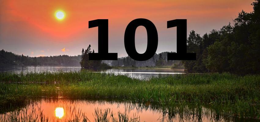 Interprétation du numéro 101 selon la numérologie