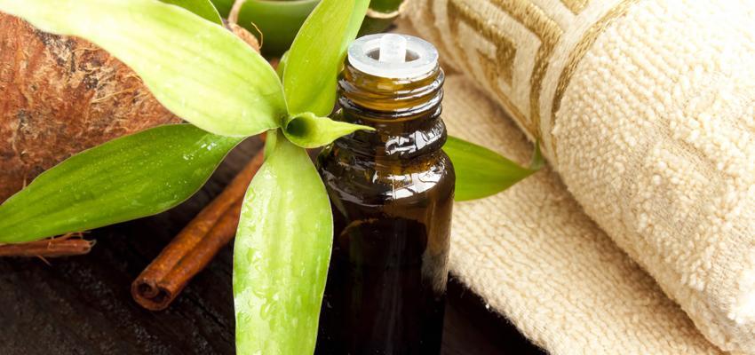 L'huile essentielle de Tea Tree, une valeur sûre de l'aromathérapie