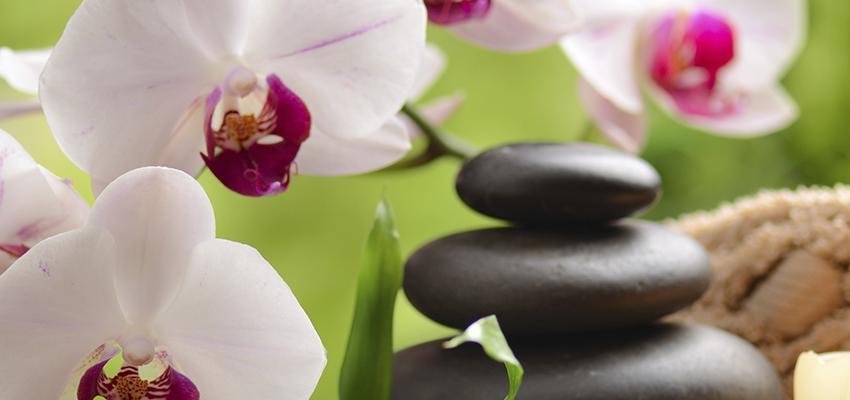 La décoration avec Feng shui pour profiter des bonnes énergies de votre maison