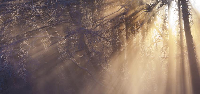 La signification spirituelle du solstice d'hiver